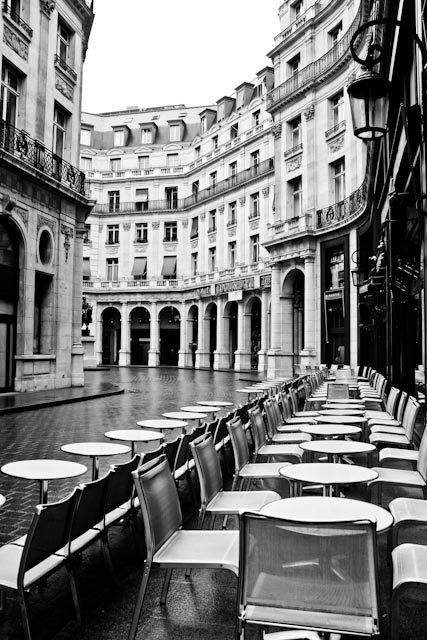 Paris chairs Rebecca Plotnickil_570xN.269434329