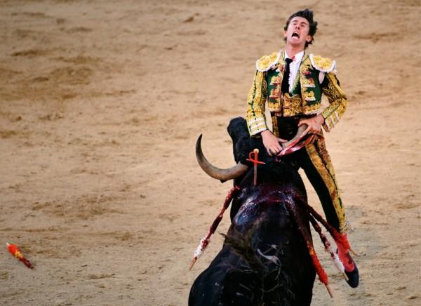 2009 in pictures corrida goring