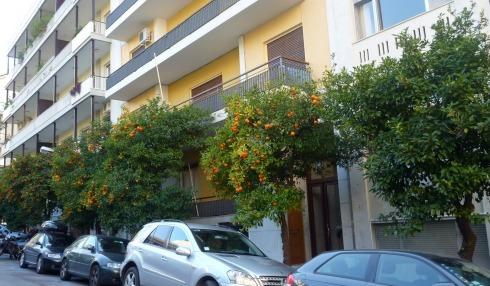 Street oranges