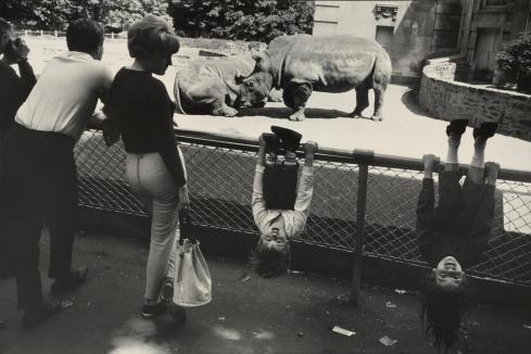9 06-winogrand12-superJumbo